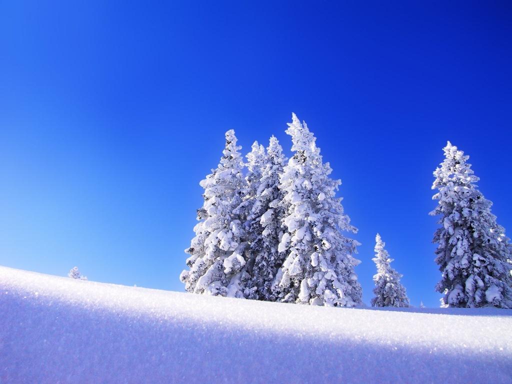 Montagne paysage neige mountain fond ecran arbres sous la neige